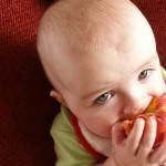 BLW – O que é o método Baby Led Weaning?