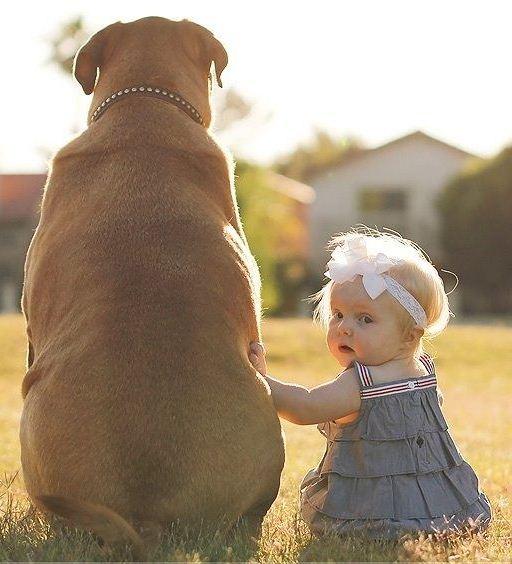 melhor amigo 11